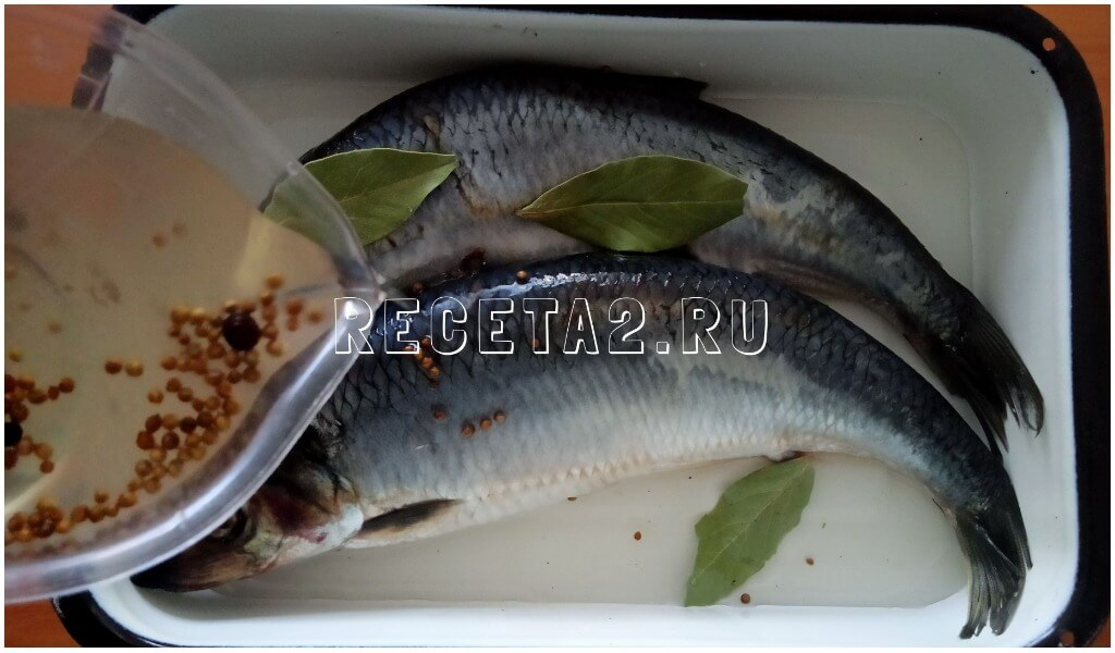 malosolnaya-seledka-v-domashnix-usloviyax